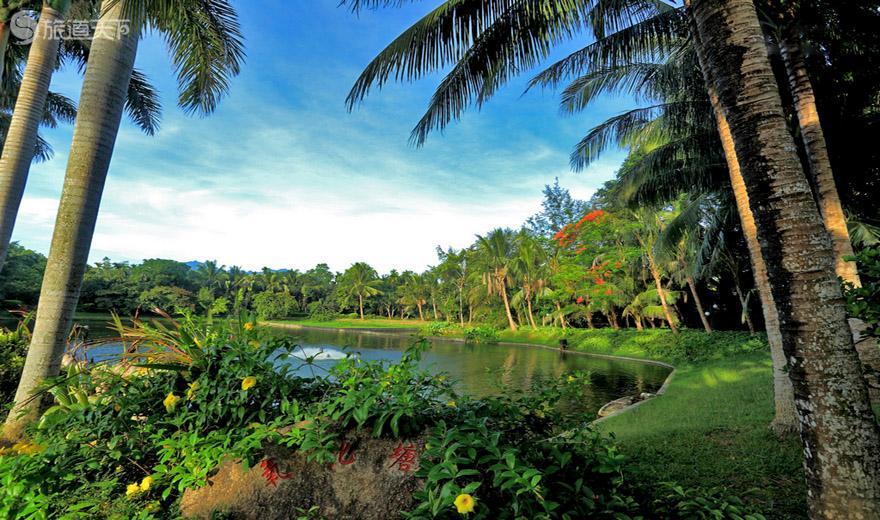 兴隆热带植物园-氧化塘