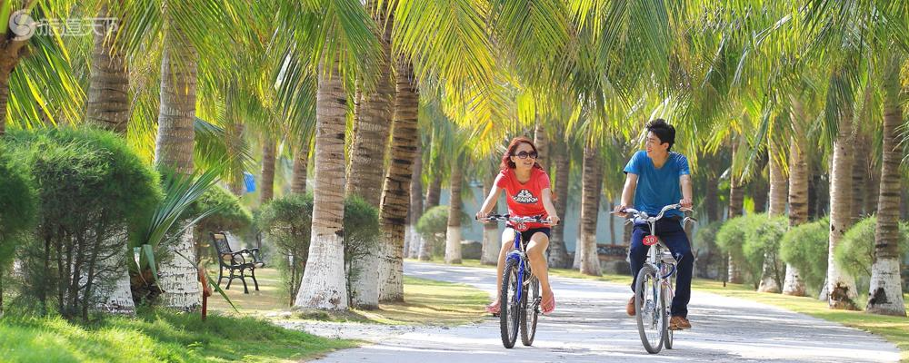 单人自行车